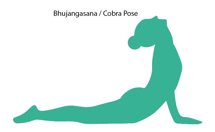 Silhouette of Cobra Pose!