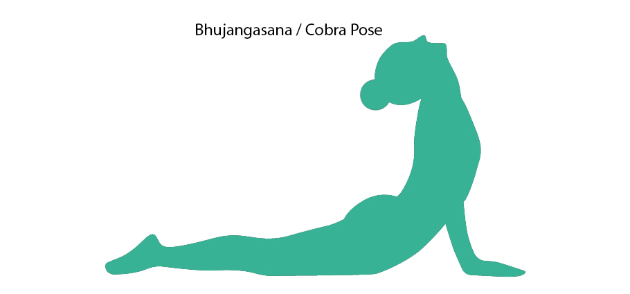 Silhouette of Cobra Pose!