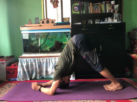 Variation of Downward Dog Yoga Pose.